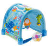 Fisher-Price Ocean Wonders Gym