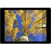 "Apple iPad Air 2 Gold 128GB with 9.7"" Retina Display Wi-Fi + Cellular - 3G, 4G, LTE, Sim-Free"
