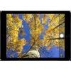Apple iPad Air 2 9.7 inch 128GB Wi-Fi Cellular Tablet in Silver