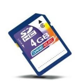 Dane Elec Da SD 4096 Reviews