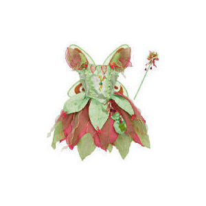 Photo of Tinkerbell Fairy Dress Up Age 3/5 Toy