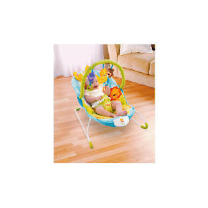 Photo of Fisher-Price Precious Planet Bouncer Baby Product