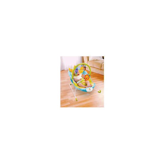 Fisher-Price Precious Planet Bouncer