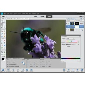 Photo of Adobe Photoshop Elements 11 Software