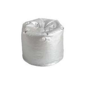 Photo of Gloss Metallic Beanbag - Silver Furniture