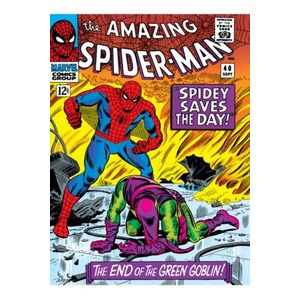 Photo of Spiderman Print Canvas Toy