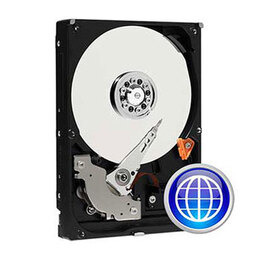 Western Digital WD4001FYYG RE 4TB