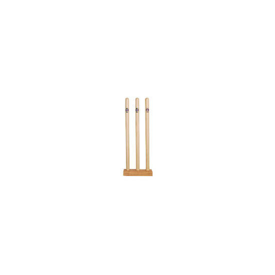 Playground Cricket Stumps