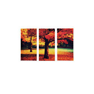 Photo of Autumn Leaves Canvas Set Of 3 60X90CM Home Miscellaneou