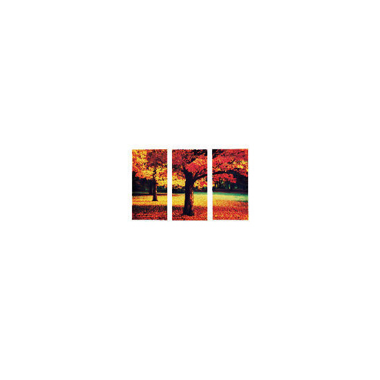 Autumn Leaves Canvas Set Of 3 60x90cm