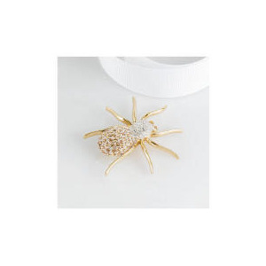 Photo of PAVE CRYSTAL SPIDER BROOCH Jewellery Woman