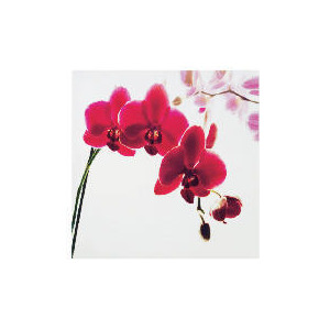 Photo of Pink Orchid Printed Canvas 40X40CM Home Miscellaneou