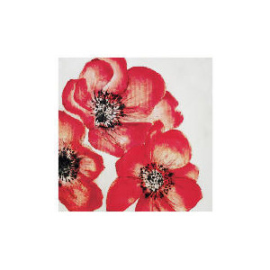 Photo of Red Poppy Canvas With Hand Painted Effect 70X70CM Home Miscellaneou