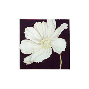 Photo of White Cosmos Printed Canvas With Hand Painted Effect 90X90CM Home Miscellaneou