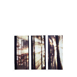 Morning Forest Canvas Set Of 3 70x90cm Reviews