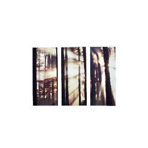 Photo of Morning Forest Canvas Set Of 3 70X90CM Home Miscellaneou