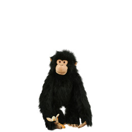Chimp Puppet Reviews