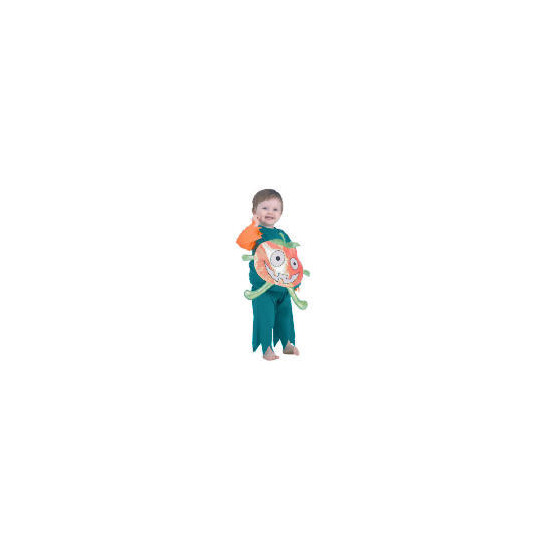 Toddler Pumpkin Tabard 5/6 YEARS