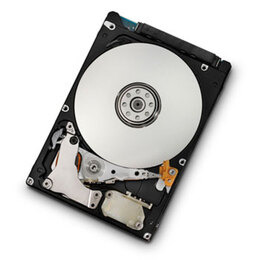 HGST Travelstar 7K1000 Reviews