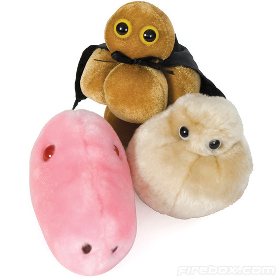 Firebox Giant Microbes (Fat Cell)