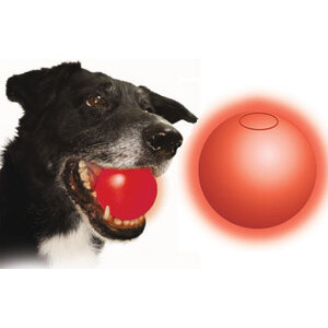 Photo of Nite Ize LED Dog Ball - Large Gadget
