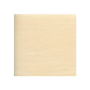 Photo of Web-Blinds Silk and Cream (127MM) Blind