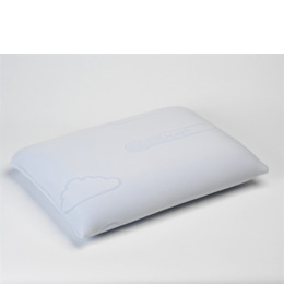 Pillow Moulded Coolmax Reviews