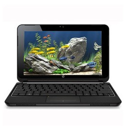 HP Mini 210-1000SA (Netbook) Reviews