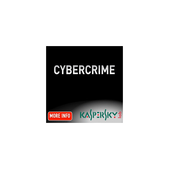 Kaspersky Internet Security 2010 1 user 2 year