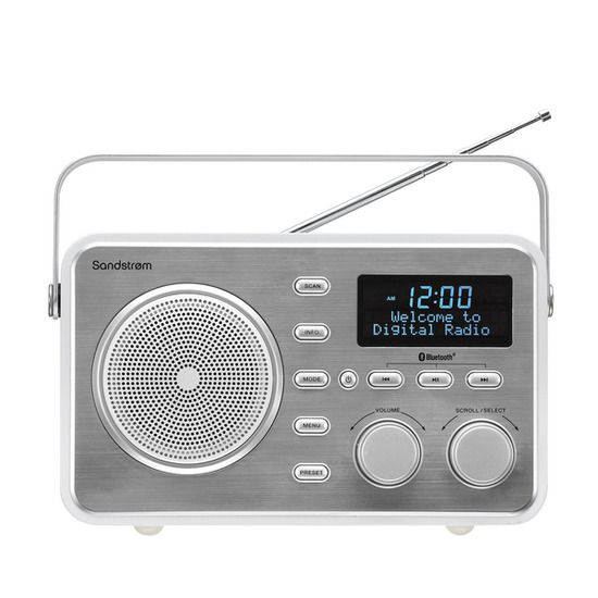 SDABXRL13 Portable DAB Bluetooth Clock Radio - Silver