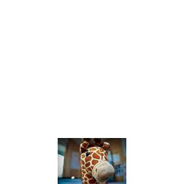 Hannspree Giraffe 8