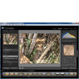 Adobe Photoshop Lightroom 3 Reviews