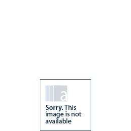 AEG S95400XNM0 American Fridge Freezer Reviews