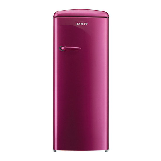 Gorenje RB60299OP Tall Fridge