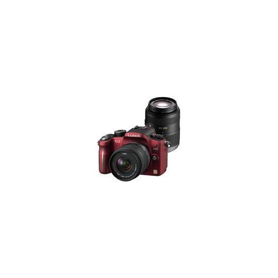 Panasonic Lumix DMC-G2 with 14-42mm and 45-200mm lenses