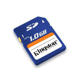 *1GB Kingston Secure Digital (SD) Card Reviews