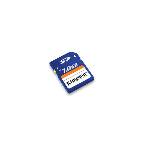 *1GB Kingston Secure Digital (SD) Card