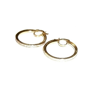 Photo of Gold Loop Earrings Jewellery Woman