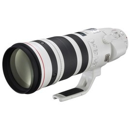 Canon EF 200-400mm f/4L IS USM Extender 1.4x Lens Reviews