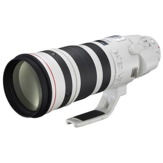 Canon EF 200-400mm f/4L IS USM Extender 1.4x Lens