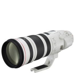 Canon EF 200-400mm Reviews