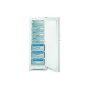 Photo of Indesit UFAN400 NF Freezer