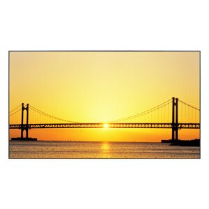 Photo of Samsung 460UT-2 Monitor