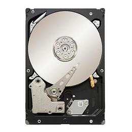 Seagate ST32000644NS Reviews