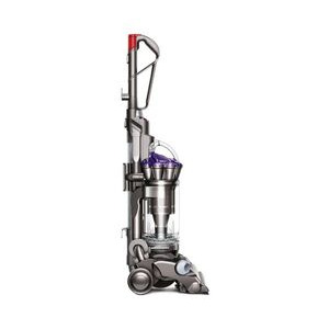 Photo of Dyson DC33 Animal Vacuum Cleaner
