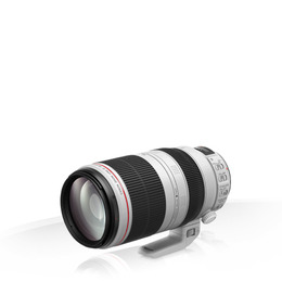 Canon EF 100-400mm f/4.5-5.6L IS II USM Reviews