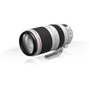 Photo of Canon EF 100-400MM F/4.5-5.6L IS II USM Lens