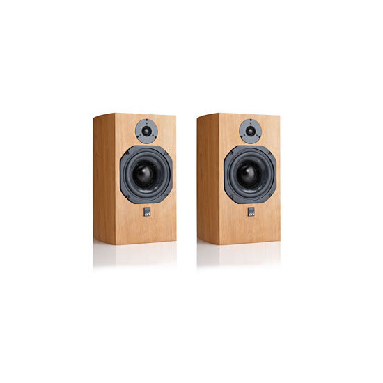 ATC SCM19 Entry Series Speakers