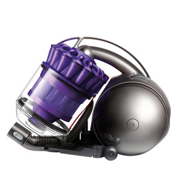 DYSON DC39 Animal Reviews