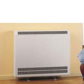 DIMPLEX FXL24 Fan Storage Heater Reviews